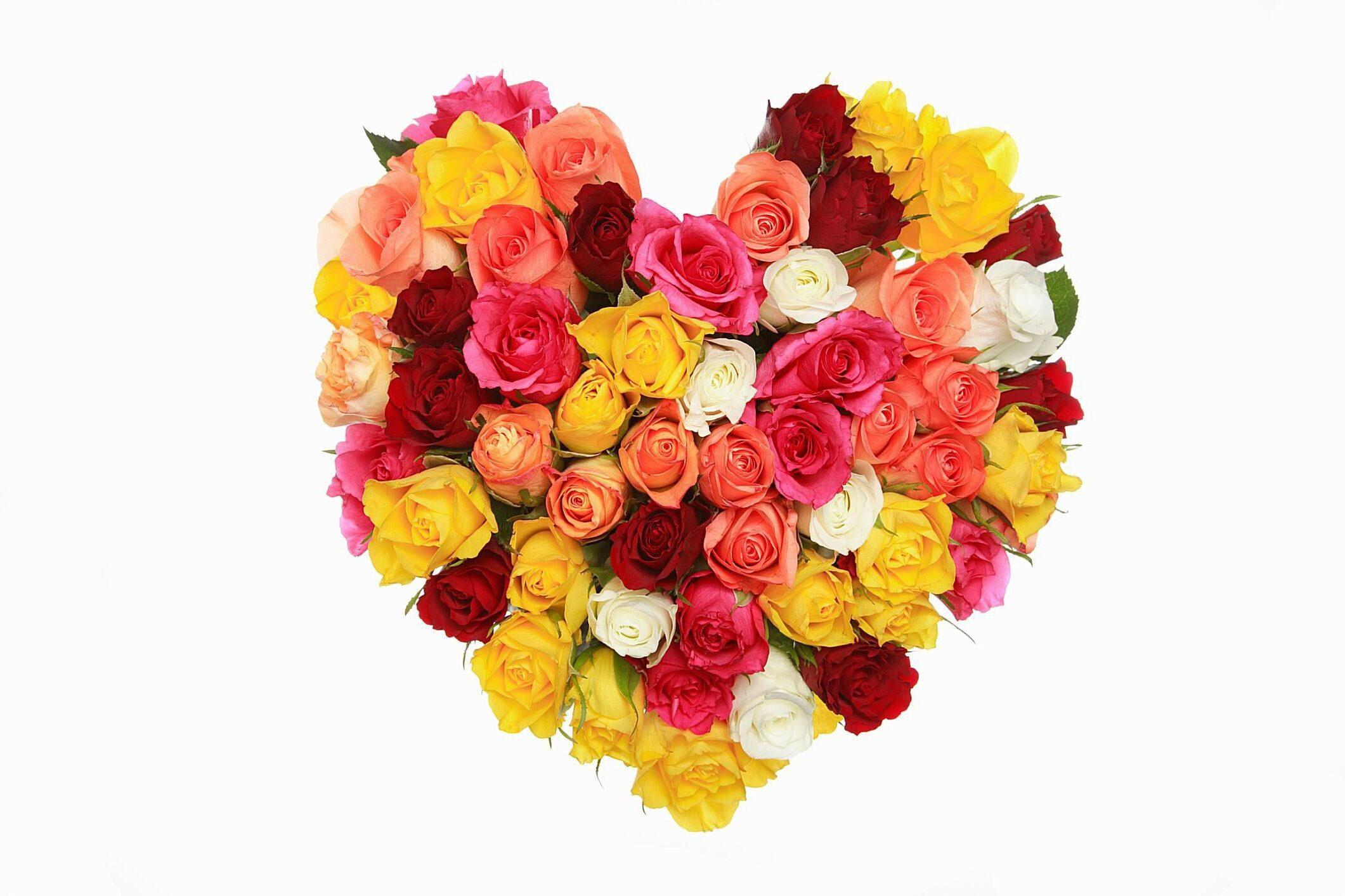 Güllerin Anlamları